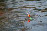 Idée de Sortie Argy Pêche dans l'étang Baron