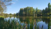 Idée de Sortie Écueillé Pêche à l'étang communal