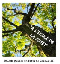 Idée de Sortie Neuillay les Bois Balade guidée A l'école de la fôret