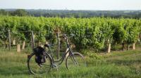 Idée de Sortie Belleville sur Loire Vélo Family Ecolodge