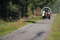 Idée de Sortie Niherne Laleuf Loisirs - Balades à cheval et location roulottes et calèches