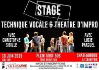 Idée de Sortie Diors Stage de technique vocale et théâtre d'impro !