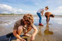 Idée de Sortie Lège Cap Ferret Balade et pêche à pied à marée basse en famille