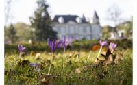 Château de Franqueville-Credit-Pau-Pyrenees-Tourisme--PL