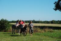 Idée de Sortie Mareuil sur Arnon Balade nature avec un âne