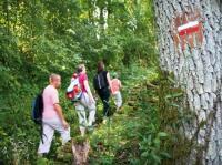 Idée de Sortie Saint Avit Sorties découverte en vallée du Loir
