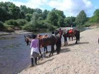 Idée de Sortie Saint Germain des Bois Ferme Equestre de Chambon