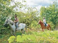 Idée de Sortie Esvres Centre équestre et poney club du Buisson