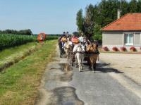 Idée de Sortie Contres Centre de Tourisme Equestre - Attelage Plaisir
