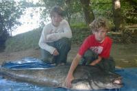 Idée de Sortie Luynes Stages de pêche silures et carnassiers de Loire
