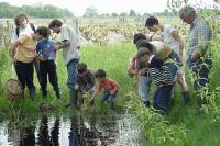 Idée de Sortie Seuilly Balades nature en Val de Loire