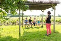 Idée de Sortie Loir et Cher Activités Oenotouristiques au Domaine Sauvète