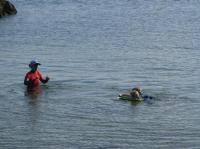 Idée de Sortie Bidart Cours de natation et aquagym