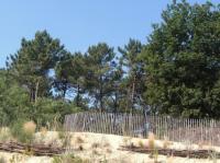 Idée de Sortie Labenne Parcours d'orientation Le Cydel