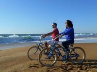 Idée de Sortie Ondres Location de vélos 1Velo