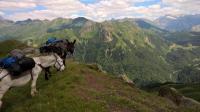 Idée de Sortie Ogeu les Bains Monsieur David BORDES - Accompagnateur de montagne