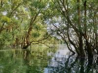 Idée de Sortie La Loge aux Chèvres Balade Contée : L'Aube des Lacs