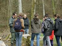 Idée de Sortie Basse Normandie Randonnée commentée Un matin d'hiver en forêt de Cerisy