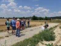 Idée de Sortie Vichel Nanteuil Visite guidée Sur les traces des combats du Bois de Belleau