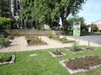 Idée de Sortie Aisne Visite guidée du jardin des plantes médicinales