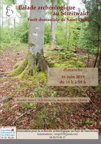 Idée de Sortie Voyer JOURNEES DE L'ARCHEOLOGIE  : BALADE ARCHEOLOGIQUE GUIDEE