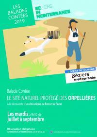 Idée de Sortie Languedoc Roussillon BALADE CONTÉE AUX ORPELLIÈRES