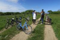 Idée de Sortie Ille et Vilaine Rallye nature en vélo électrique