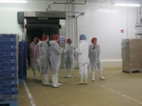 Idée de Sortie Bretagne Visite guidée de l'usine Fleury Michon