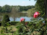 Maison LIBELLULE-jardin-maison-libellule