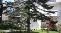 tourisme Marennes Moulin des Gardes