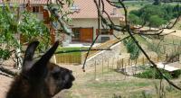 tourisme Dancé La Bruyère aux Lamas