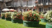 Gîte Fougerolles Gîte Appartements -2 Rue des Sybilles