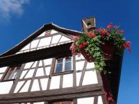 Location de vacances Fegersheim Gîte Kia Ora