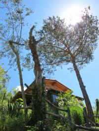 Location de vacances Breil sur Roya Location de Vacances Gaïa Luna
