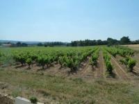 Location de vacances Saint Just Location de Vacances La Vigne