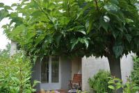 LES RESIDENCES DE VIRGINIE 5 - N° 15-gite-arbre