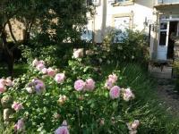 Location de vacances Bouilhonnac Location de Vacances Manor House Domaine des Pins