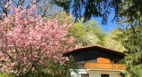 Location de vacances Birkenwald Location de Vacances Chalet Dabo