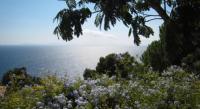 gite Saint Tropez Rental Villa Villa Crete Haute