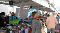 gite Dieppe Dieppe Coeur de Ville