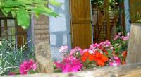 tourisme Lescheraines Serenella fontaine Et Coquelicots