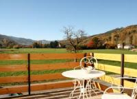 Location de vacances Griesbach au Val Location de Vacances Apartment Au Calme
