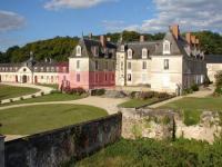 gite Candes Saint Martin Appartement-gîte du Château de Gizeux