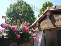 gite Arles Les Mazets Des Robiniers