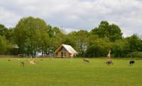 Location de vacances Limoges Location de Vacances Les Lodges Du Reynou