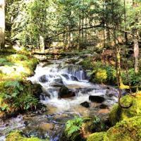 tourisme Vollore Montagne Chambre d'hôte La Besbre