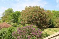Location de vacances Douy la Ramée Location de Vacances Ferme de la Vallière