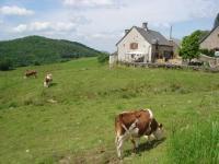 Location de vacances Saint Bonnet de Salers Location de Vacances Chez Marraine
