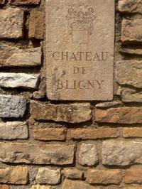 gite Allerey sur Saône L'appartement du Château de Bligny Les Beaune