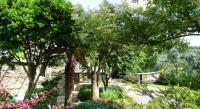 tourisme Cruguel Hortensias